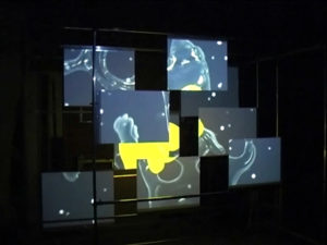 An art installation with nine plates and one video projection.