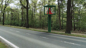 Videostill of Boedhha in a speed trap near a busy road.